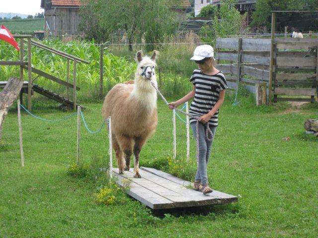 20110702-st-lama-kindergeb-1018